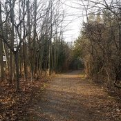 A great day for a Nature Trail Walk in December