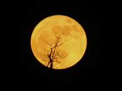 Super Moon 12-3-2017