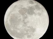 Super  Moon 12 3 2017
