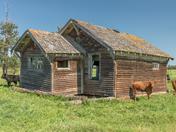 Vintage homestead