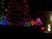 Tom and Cheryl's Christmas lights