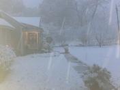 Snow in Jackson