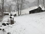 Snow in Willis Cove, Canton, NC