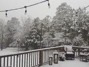 Snow at Logan Martin Lake,AL