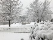 2017 Snowfall