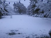 5-6 inches in brookhaven.