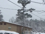 Graysville,Al snow 2017