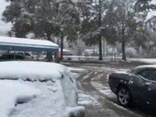 snow fall in Albany La
