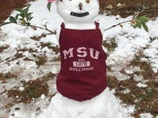 Mississippi SnowDawg