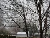 Snowing in Greer!