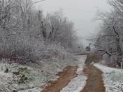 Snowing in cana va