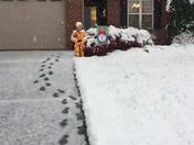 Chilly C3PO
