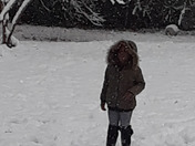Winter snow