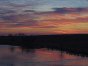 Icy reflections in Madison County at twilight this evening.