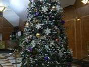 One of the Beautiful N.Y. CHRISTmas Trees.