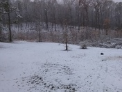 Backyard goodwater