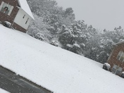 Snow day.!