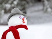 Mississippi Snowman