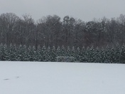 Soccer field at Ivey Redmon Sports Complex 2017-12-09