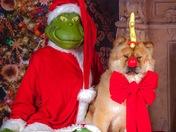 Merry Grinchmas!