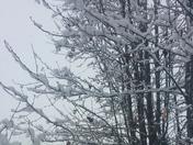 Snow Dobson, NC December 2017
