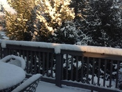"""Snow fall about 3"""""""
