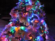 Snow and Christmas Lights