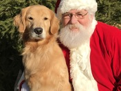 Santa and Paws on Pine dogs.