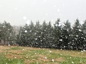 Snow This Afternoon Wells Knobs (4:00)