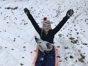 Chicken sledding