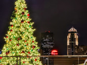 """""""O Christmas tree, O Christmas tree"""""""