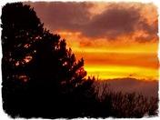 Red sun set