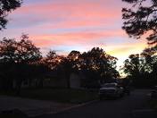 Palm city sunset
