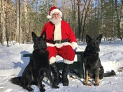 Santa at Paws on Pine