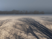 Shadows on a Frozen Lake
