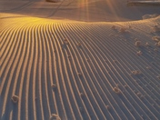 Corduroy snow at  sunrise Stowe Mountain.