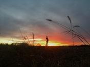 Des Moines sunset