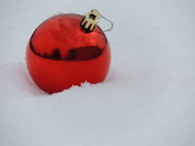 RED  BULB IN THE SNOW