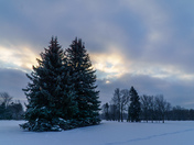 Montreal winter morning