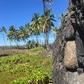 Pu'uhonua o Honaunau National Park