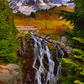 Mt Ranier National Park