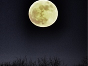 January Super Moon