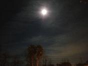 Bright Moon 1-1-2018