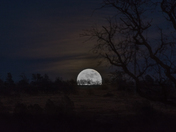 Super Moon Rising over Bidwell Park
