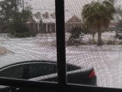 Snow Day !!