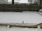 Back yard ice rink