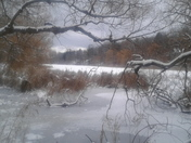 Grenadier Pond