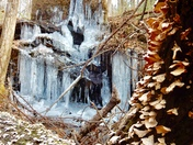 Wonderful winter waterfall walk on Paris Mt.