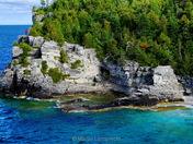 Caribbean of Ontario