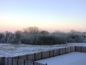 Frozen Fog at Deer Creek
